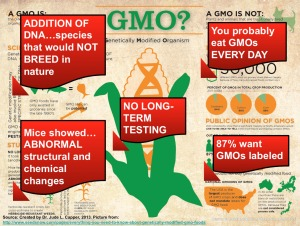 GMOs in capital letters
