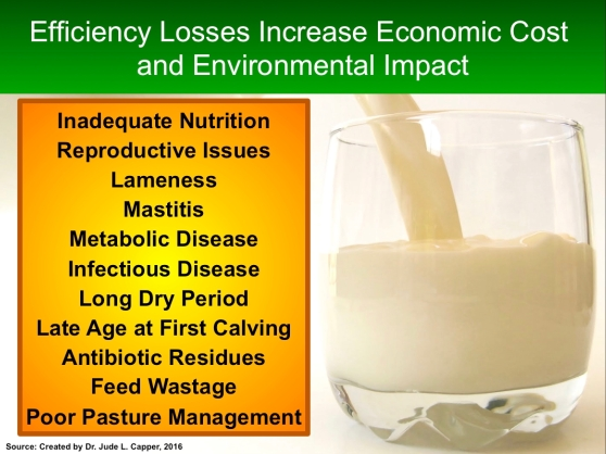 efficiency-losses-uk