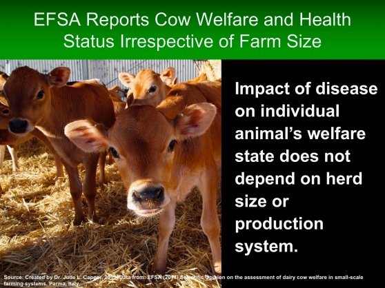 efsa-farm-size-irrespective