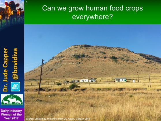 Human crops everywhere S Africa blue